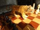 Tiger, Türme, Titelträger
